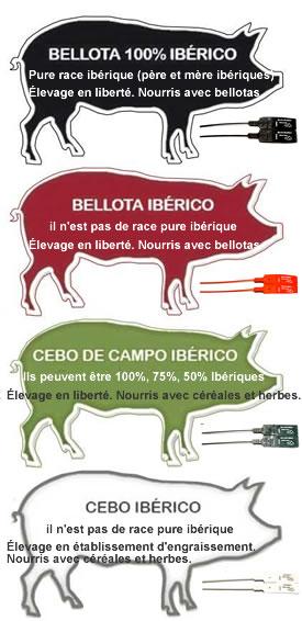 Qualité jambon ibérique pata negra pur bellota